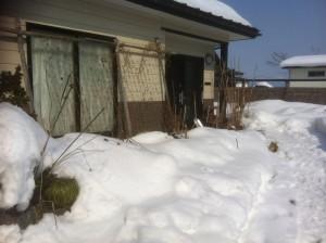 遺品整理@宮城仙台スマイルライフみやぎのブログ-山形にも間もなく春が来ますね。