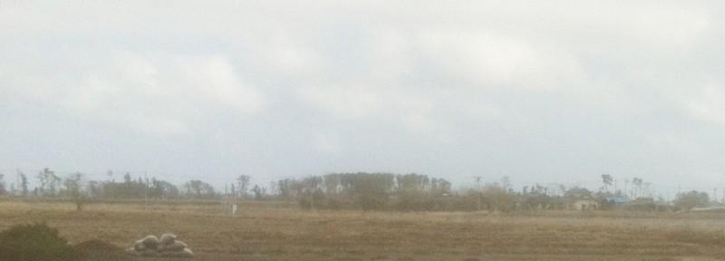 $遺品整理@宮城仙台スマイルライフみやぎのブログ-宮城県名取市2012/3/11