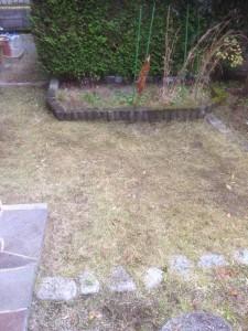 家財整理後の草刈|宮城県仙台市 (1)