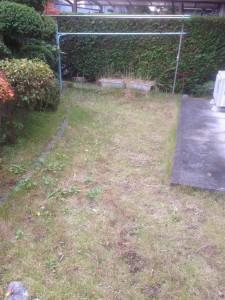 家財整理後の草刈|宮城県仙台市 (2)